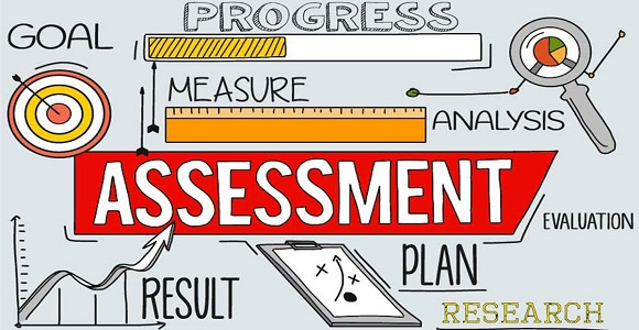 Organisation execution capability assessment